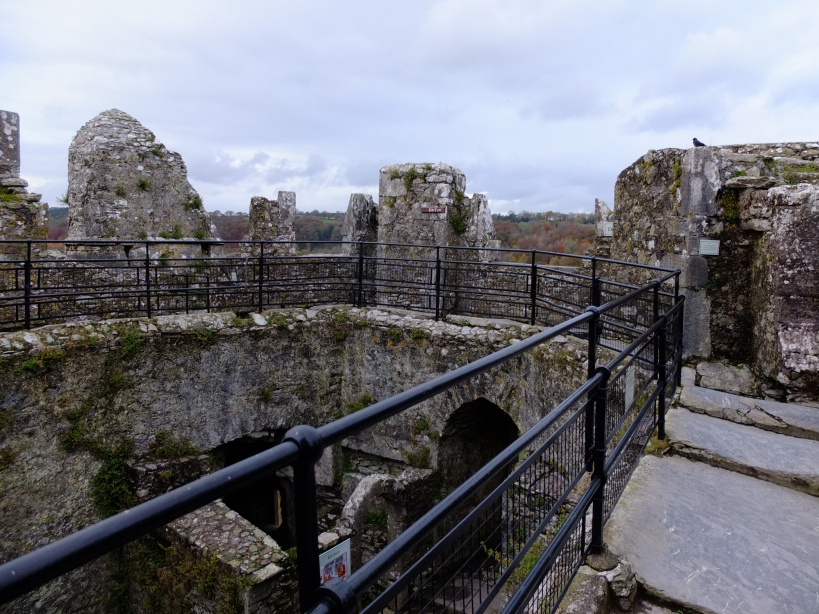 Blarney Castle from the roof